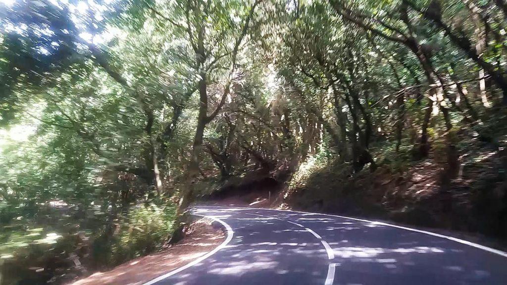 Góry Anaga i las tropikalny na Teneryfie droga przez las