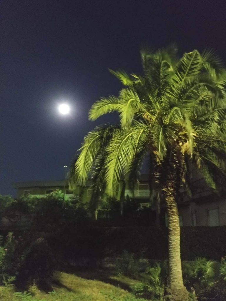Wieczorna spacery po Katanii - Sycylia na własną rękę