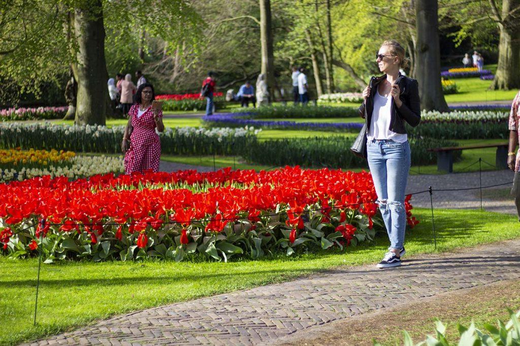 Holandia Keukenhof blog podróżniczy