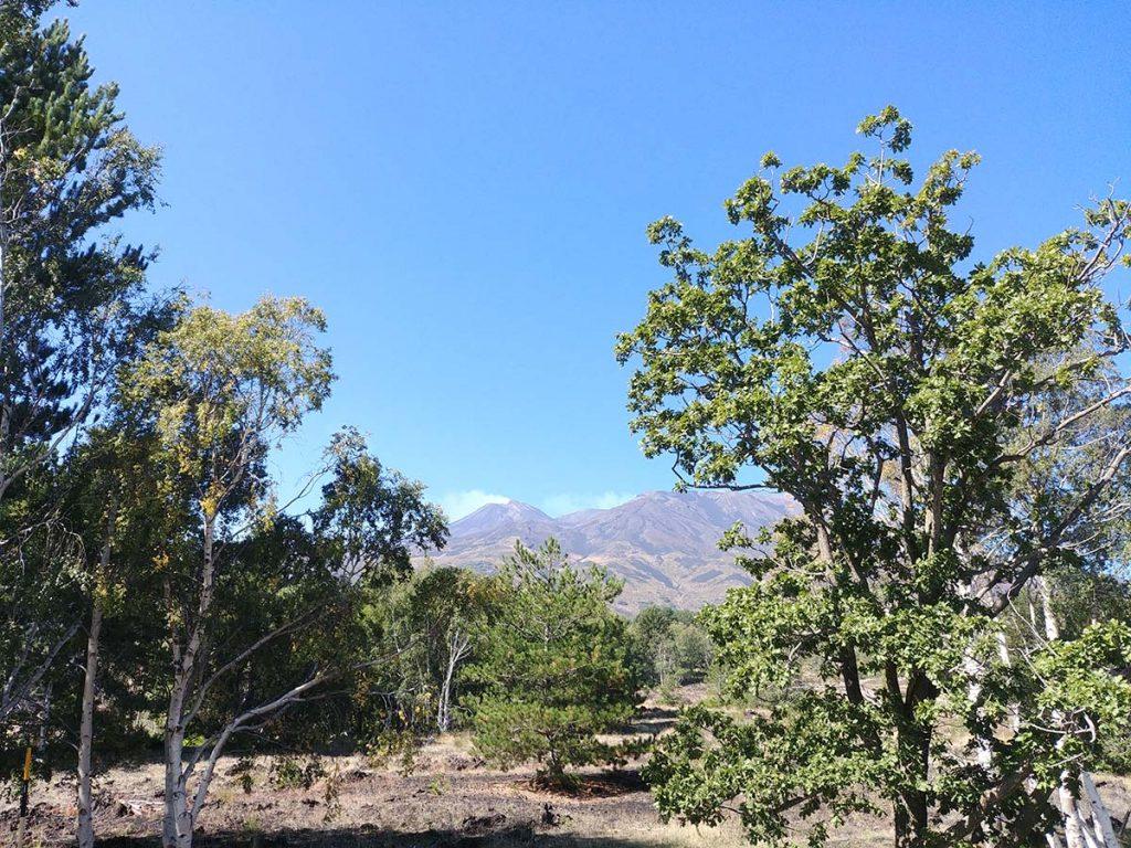 etna wulkan sycylia wulkan etna