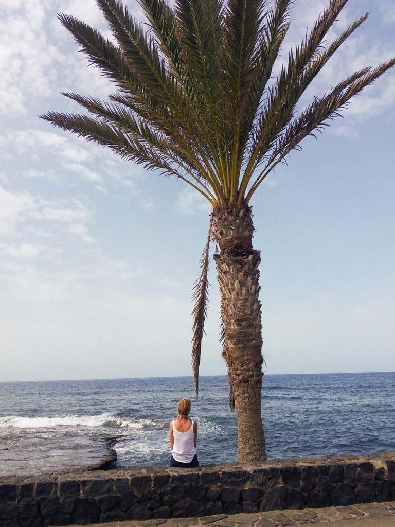 Teneryfa Los Cristianos wybrzeże i palma blog podróżniczy