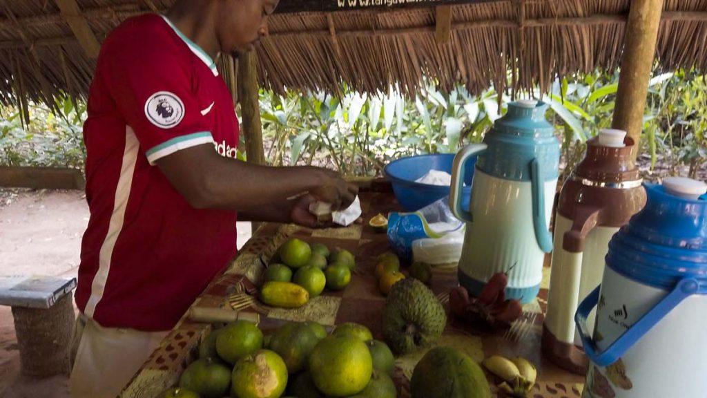 farma przypraw zanzibar poczestunek owocami herbata kawa Zanzibar plantacja przypraw