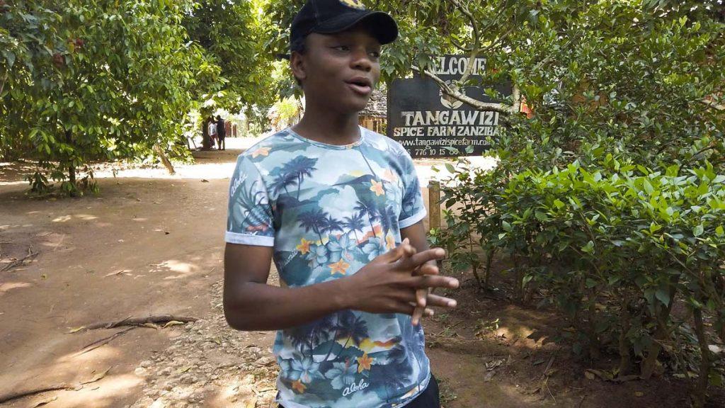 Zanzibar plantacja przypraw - farma przypraw Tangawizi