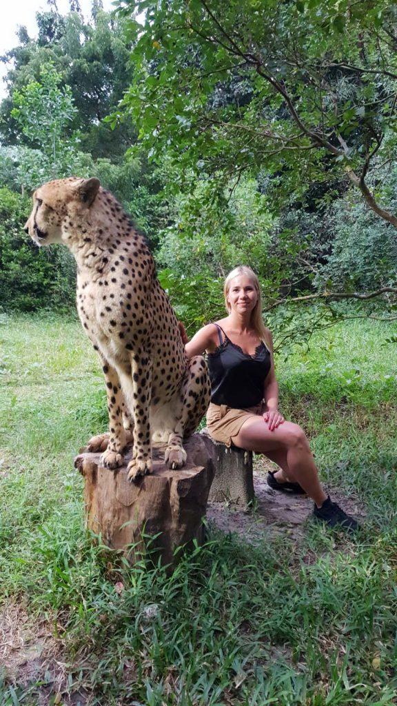 cheetahs rock zanzibar zdjecie z gepardem Zanzibar atrakcje