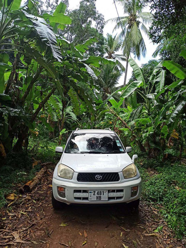 Cena wynajmu samochodu na Zanzibarze