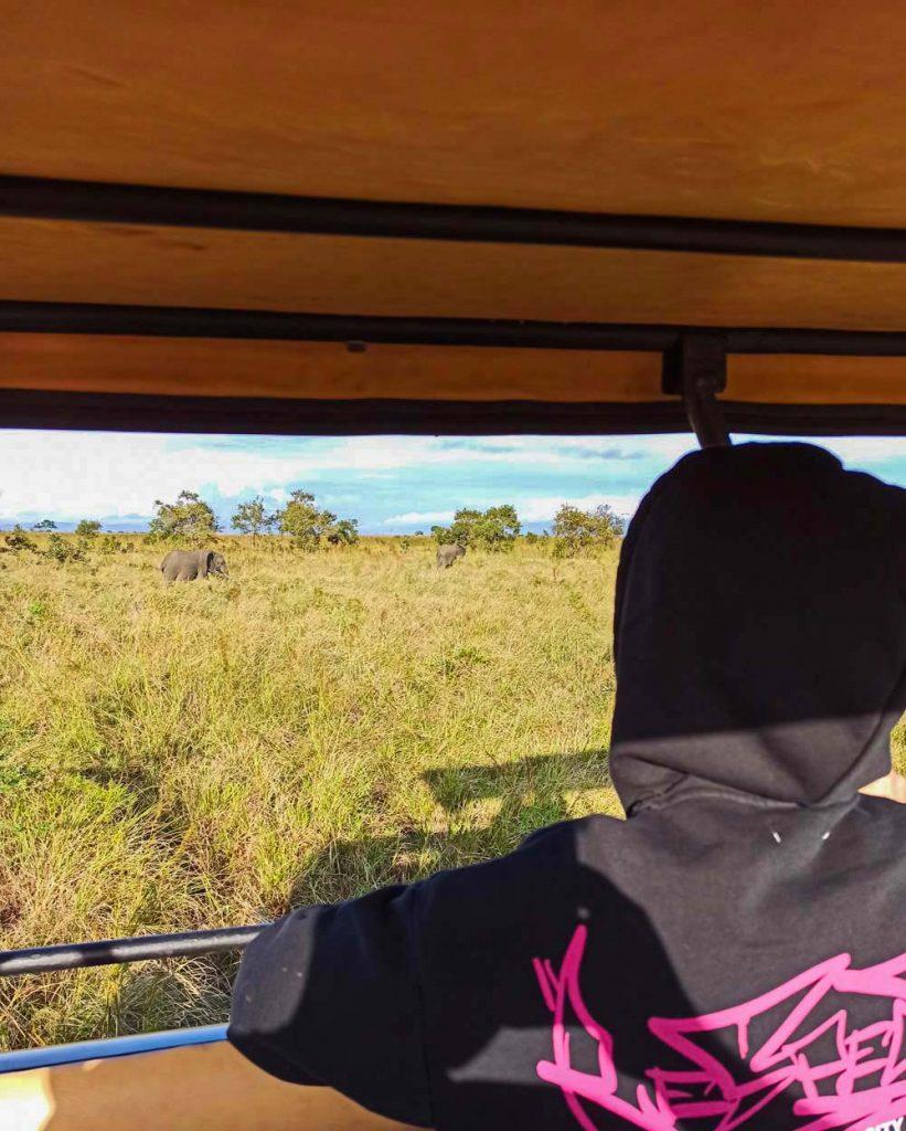 IMG 20210602 110137 safari w Tanzanii