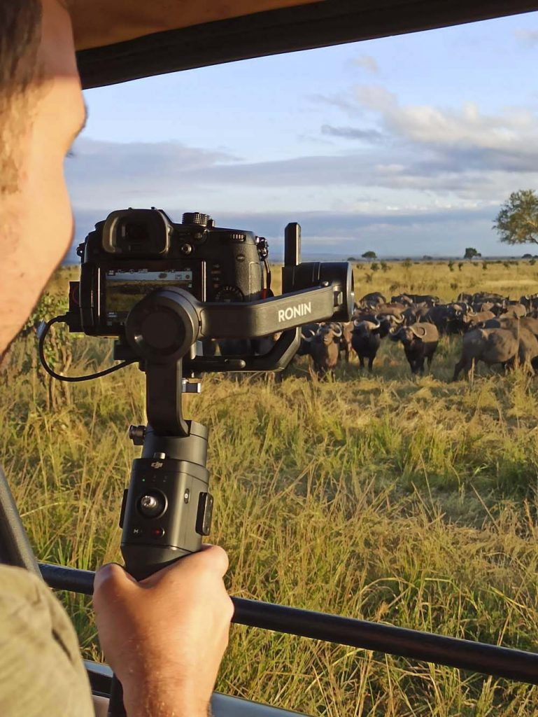 jak zorganizowac safari blog podrozniczy safari w Tanzanii