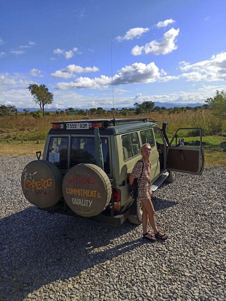 Safari w Tanzanii organizacja takiej wycieczki w Afryce