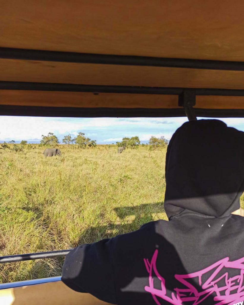 salonie safari tanzania afryka jak zorganizowac na wlasna reke safari w Tanzanii